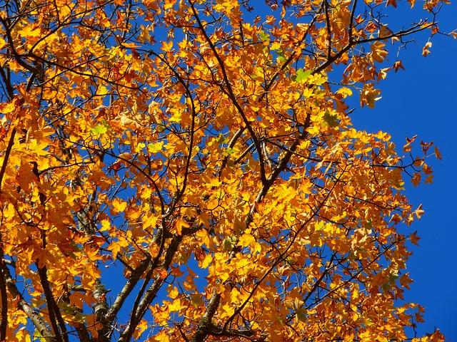 Trois choses à faire sur la Costa Brava en automne (I)