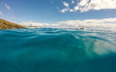 Vous aimez la plongée sous marine? Visitez Portbou!