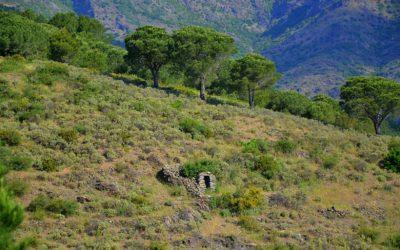 Menhires y Dólmenes para visitar en las montañas de la Albera